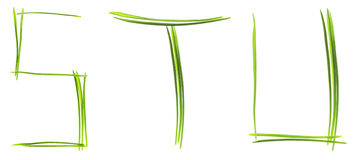 Grass letters royalty free stock image