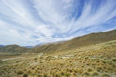 Grass on Lindis Pass area in New Zealand with cloudy blue sky Royalty Free Stock Photography