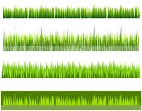 Grass line row Royalty Free Stock Image