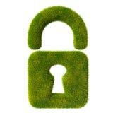 Grass locked lock Royalty Free Stock Photography
