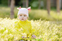 In grass Royalty Free Stock Images