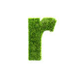 Grass lower-case letter Royalty Free Stock Image