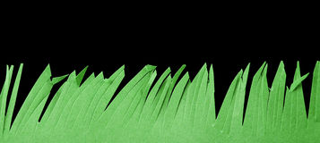 Grass made of paper Stock Photo