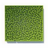 Grass maze. Green grass maze background Stock Photo