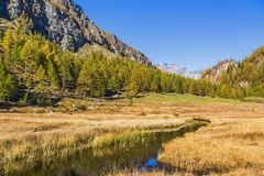 Alpe devero autumnal mountain landscape. Grass meadows growing on a water pond with nice reflections inside the Alpe Devero flat land royalty free stock photos