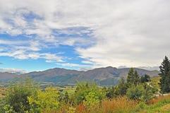 Grass mountain Stock Image