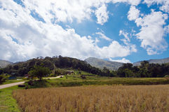 Grass, mountain and cloudy sky view of Chiangmai Thailand Stock Photography