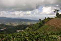 Grass, mountain and cloudy sky view of Chiangmai Thailand Royalty Free Stock Image