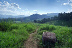 Grass, mountain and cloudy sky view of Chiangmai Thailand Stock Photo