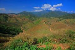 Grass mountain. Mountain in Nan Province,Thailand Royalty Free Stock Photo