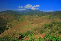 Grass mountain. Mountain in Nan Province,Thailand Royalty Free Stock Photos