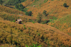 Grass mountain. Mountain in Nan Province,Thailand Royalty Free Stock Image