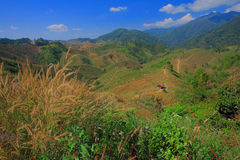 Grass mountain. Mountain in Nan Province,Thailand Stock Image