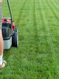 Grass mowing. Man mowing grass with grass-mower Stock Photos