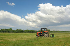 Grass mowing. Farm tractor mowing large meadow field Stock Image