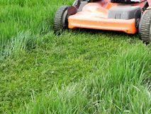 Grass mowing Royalty Free Stock Image