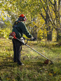 Grass mowing. Man mowing grass with petrol hedge trimmer Royalty Free Stock Photo