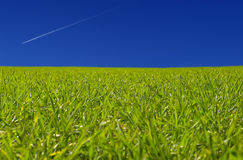 Grass n sky Stock Photos
