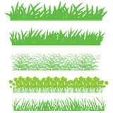 Grass and nature Stock Photos