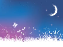 Grass and night sky background. A starry night sky background with grass, flowers and the moon. Vector illustration Royalty Free Stock Image