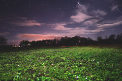 Grass and night sky. Light of stars, night sky and green grass Royalty Free Stock Photo