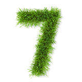 Grass number Royalty Free Stock Photo