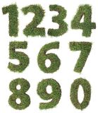 Grass Numbers Cutout Stock Photos
