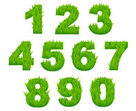 Grass numbers and digits Stock Images
