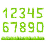 Grass Numbers Stock Photography