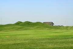 Free Grass On The Golf Course Royalty Free Stock Image - 28426806