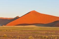 Grass, Oryx and dune landscape near Sossusvlei, Namibia Royalty Free Stock Photo