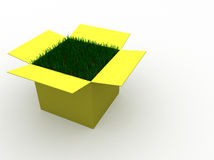 Grass out of the box Stock Photography