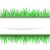 Grass outer green stripe frame  Stock Images