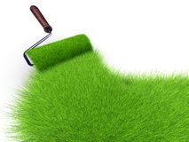 Grass paint Stock Images
