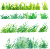 Grass painted elements vector Royalty Free Stock Photos