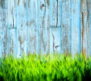 Grass Painted Wood Background Royalty Free Stock Photos