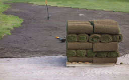 Grass on a pallet. Pile of grass twisted into a roll on a pallet in the background improves the lawn Stock Images