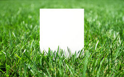 Grass and paper Stock Photos