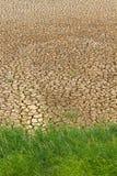 Grass parched soil Stock Photos