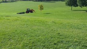 The grass. In the park. Cut the grass. Mow the lawn Stock Photography