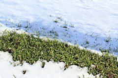 The grass partially covered with snow Stock Photo