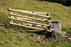 Grass, Pasture, Wood, Rural Area Royalty Free Stock Photo