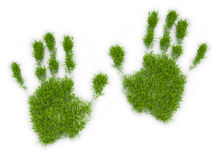 Grass patch shaped like a hand Royalty Free Stock Image