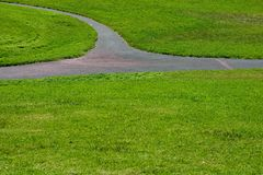 Grass Path #3 Royalty Free Stock Photo