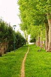 Grass path with Bench Royalty Free Stock Images