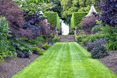 Grass path leading to stone stairs in a landscaped garden. Elegant, traditional landscaped garden with lush green lawn leading to stone stairs, with mature herbs Stock Image