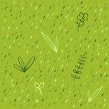 Grass pattern royalty free stock photo