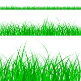 Grass_pattern Fotografia Stock
