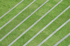 Grass pattern Stock Images
