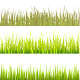 grass pattern set vector 免版税库存图片